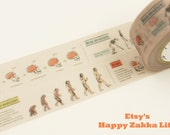 ON SALE - Evolution - mt Limited Edition - Japanese Washi Masking Tape - 7.6 yard