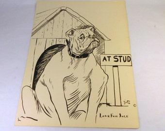 Vintage BULLDOG Print - 1930's ZITO - Humorous Funny - Dog Art - Collectible