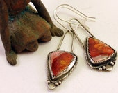Silver Mismatched Crazy Lace Agate Earrings