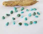 Natural Pinto Valley Turquoise Nugget Lot 20.35cts