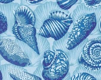 Free Spirit - Natural World by Snow Leopard Designs - Sea Shells - Lagoon