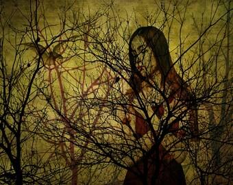 Maid of Bierdenbough Forest, Fantasy, Enchantress, Woodland, Forest