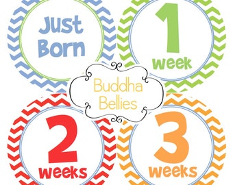READY to SHIP Baby Boy Newborn Month to Month Stickers Just Born Baby Monthly Stickers Month Chevron Baby Stickers B163