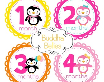 Baby Month Stickers Baby Girl Monthly Baby Stickers Penguin Nursery Baby shower gift Baby Month Stickers Baby Stickers