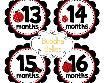 2nd Year Stickers Baby Girl Second Year Stickers - Months 13-24 - Baby Girl Monthly Milestone Stickers for Baby First Birthday Gift Ladybug