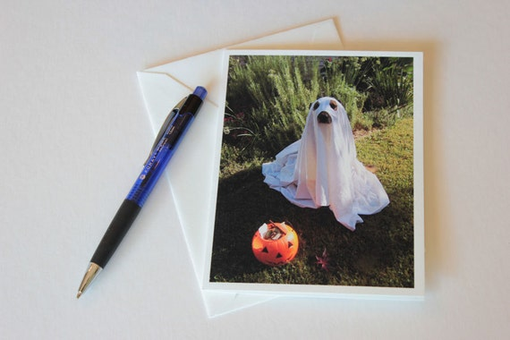 Halloween greeting cards, Ghost dog, dog art, fun, dog photography, note cards