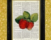 Beautiful Red Strawberries Dictionary Page Art Print, Recycled Upcycled Vintage Book Page Art, Home Decor