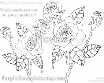 Adult Coloring Page Printable Página para colorear Rosen Digital Color Sheet Roses Rose Buds Bud Flowers Line Drawing Art - INSTANT DOWNLOAD