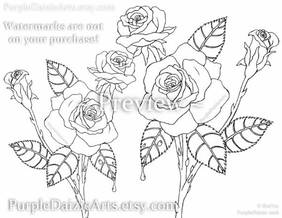 Drawing Lines With Qt : Adult coloring page printable página para colorear rosen