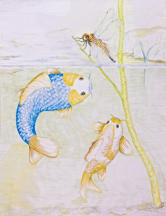 LIMITED EDITION (10) Koi Fish with Dragonfly, Koi Carp, Asagi Golden Koi, Cyprinus carpio, Asagi koi, nishikigoi, Cyprinus carpio
