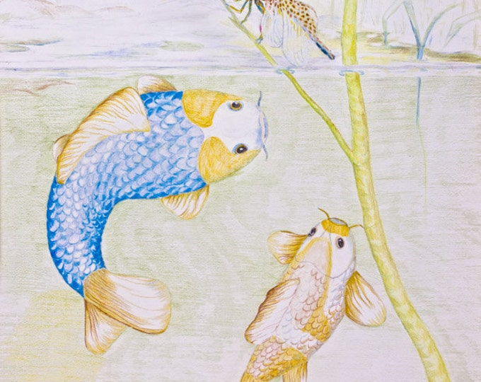LIMITED EDITION (10) Koi Fish with Dragonfly, Koi Carp, Asagi Golden Koi, Asagi koi, nishikigoi, Cyprinus carpio, Lily Pond