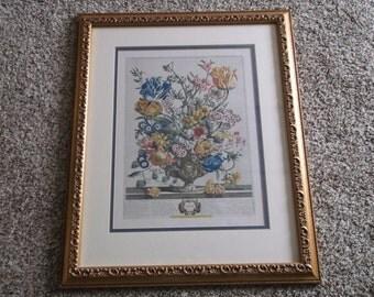 "Vintage Henry Fletcher ""12 Months of Flowers"" April-Original Hand Colored Engraving,Framed with Glass"