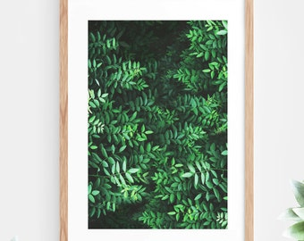 Tropical Leaves Printable Wall Art Instant Download Green Fern Leaves Jungle Forest Contemporary Wall Art Printable Poster Digital Print Art