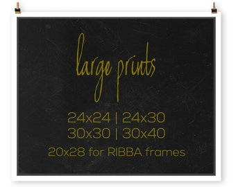 Poster Size Prints   Photography Enlargements   Large Wall Art   24x24, 24x30, 24x36, 30x30, or 30x40 Custom Enlargement Wall Art