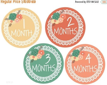 Sale Baby Milestone Stickers Girl Stickers Baby Monthly Stickers Baby Month Stickers Monthly Baby Stickers