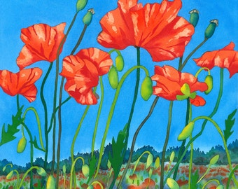 Poppy Field Signed Limited Edition Print