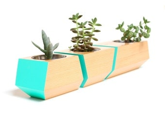 Boxcar Planter - Solid Douglas Fir with Teal