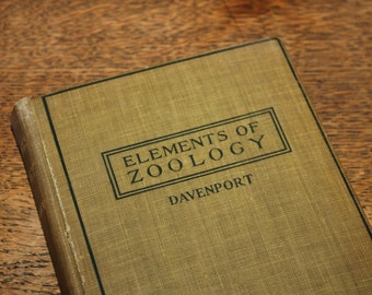 Elements of Zoology by Davenport 1923, Antique Book, Vintage Book, Antique Text Book, Vintage Text Book, Illustrated Text
