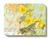 Bird paper napkin for decoupage, mixed media, collage, scrapbooking x 1. Teal Bird. No 1243
