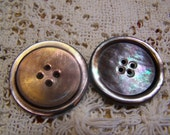 "Antique Large 1-3/8 "" Gray Oyster Pearl Iridescent Carved Shell Buttons, Set of 2 (1668)"