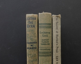 Green Tan Vintage Books / Book Decor / Home Decor / Instant Library / Library Filler / Vintage Books