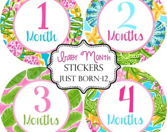 Girls Tropical Palm Beach, Monthly Baby Month Stickers Make Great Baby Shower Gifts..Bonus Just Born Sticker Included