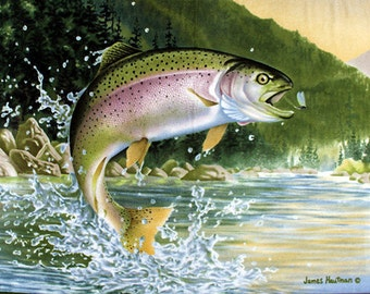 Fleece Fish Fly Fishing Rainbow Trout James Hautman Fleece Fabric Panel (ppf0959-592r) A331.05