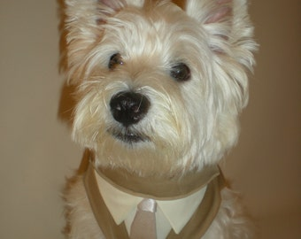 Tan Tuxedo with tie of your choice