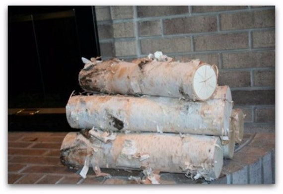 Large Fireplace White Birch Logs Set 5 Logs By Wilsonevergreens