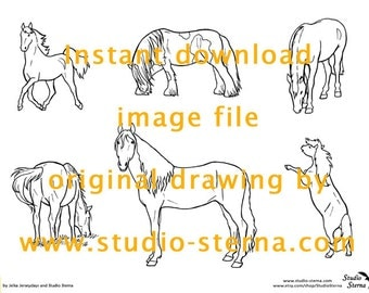 Horse Pony drawing instant download image file full body1 moving outlines pattern template stock color in children study animal pet line art