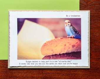 Budgie Greeting Card • Blank Card • Carb Lovers Card •Anti Diet Card • Parakeet Greeting Card • Funny Card •Bird Lovers •Miniature Animal