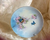 Bavaria Decorative Plate With A Blue Background Faded Into Light Blue And Cream With Cherry Blossom Nests Blue Birds