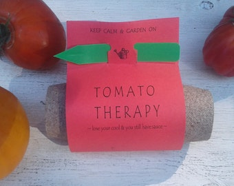 Occupational therapy gift, Heirloom tomato garden seed kit with seed starting supplies garden gift diy kit physical therapy gift
