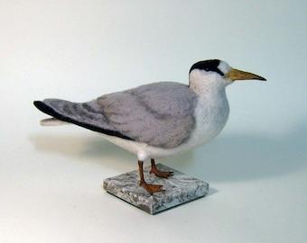 Least Tern needle felted bird