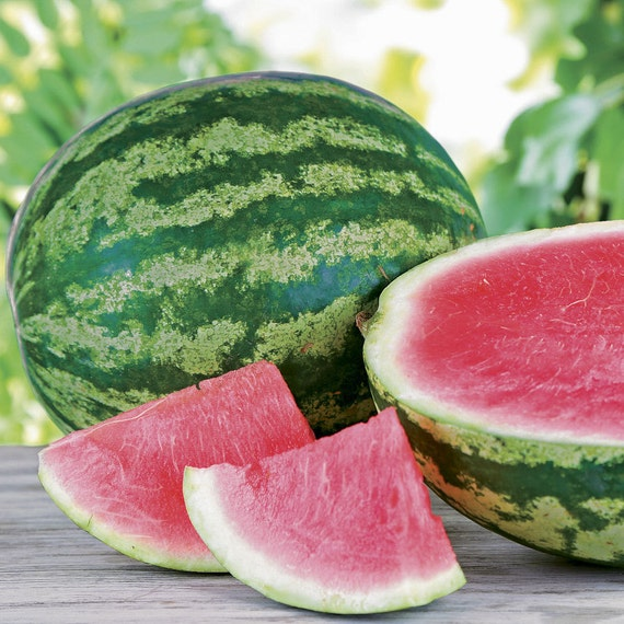 types of watermelon seeds