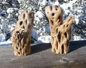 Cholla Cactus Skeleton Branch Craft Wood Kit, Aquarium/Terrarium Supplies, Desert Driftwood, Air/Aquatic Plant Base, Floral Decor, OOAK
