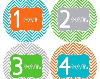 Monthly Stickers Monthly Baby Stickers Baby Month Milestone Stickers Baby Month Stickers Month to Month Bodysuit Stickers Shower Gift 125