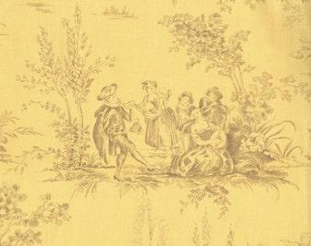 RJR Fabrics Jardin Gris Floral 2732 01 Toile Yellow Yardage by Robyn Pandolph