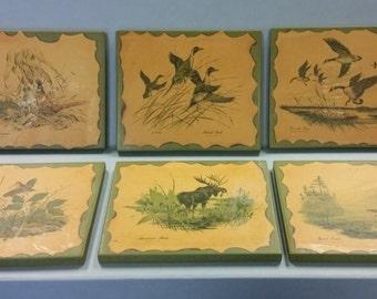Vintage Bird Wood Blocks Set of 6 of Wildlife Portrayals by Artist Ezelle Lee, 1969
