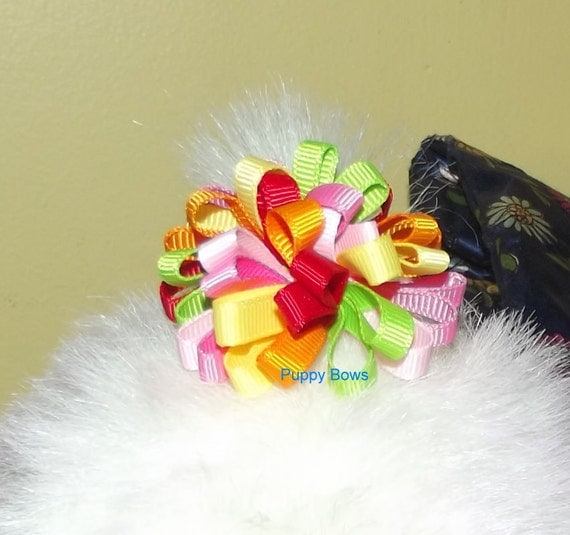 Puppy Dog Bows ~ Multi color LOOPY PUFFS Yorkie round pet hair bow barrettes or bands