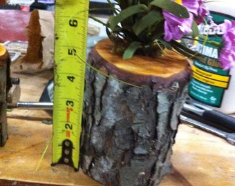 Rustic log flower and candle holder