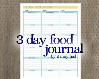 3 Day Food Journal and To Do Lists Instant Download PDF Printable 3 Pages