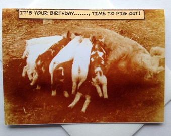 Funny Birthday Card - Funny Pig Out Birthday Card - Funny Vintage Photo Birthday Card - Hog Heaven Birthday Card