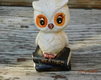 Vintage Ceramic Weather Owl