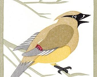 Cedar Waxwing 8 color linocut card