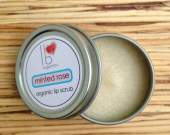 WINTER FAVORITE // Organic Lip Scrub // Minted Rose