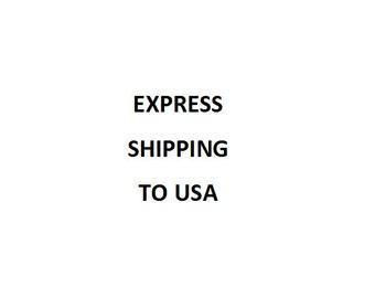 EXPRESS SHIPPING to USA