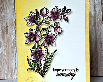Amazing Day Orchid Card