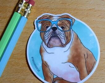 Cute dog English Bulldog wearing glasses vinyl laptop sticker