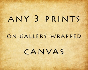 Canvas Print - Gallery Wrapped Canvas - Mounted Canvas - Set of Three
